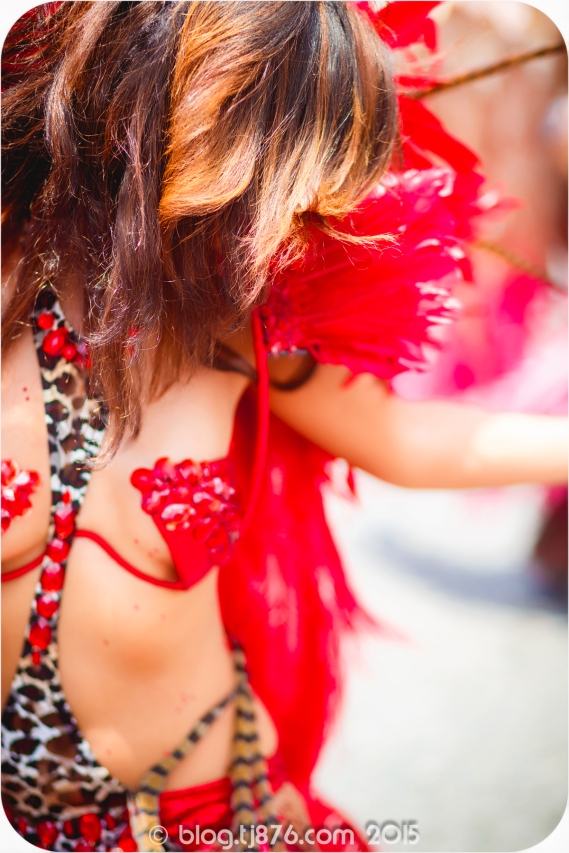 tj876 Jamaica Carnival 2015 (178)