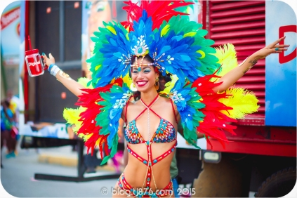 tj876 Jamaica Carnival 2015 (18)