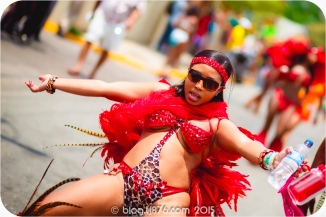 tj876 Jamaica Carnival 2015 (181)