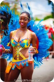 tj876 Jamaica Carnival 2015 (183)