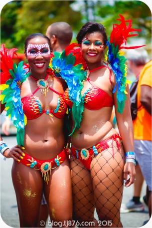 tj876 Jamaica Carnival 2015 (185)