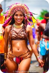 tj876 Jamaica Carnival 2015 (191)