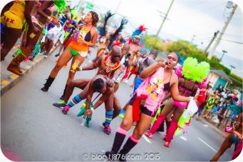 tj876 Jamaica Carnival 2015 (20)