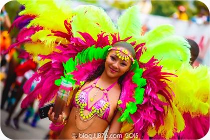 tj876 Jamaica Carnival 2015 (200)