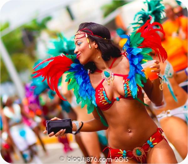 tj876 Jamaica Carnival 2015 (202)