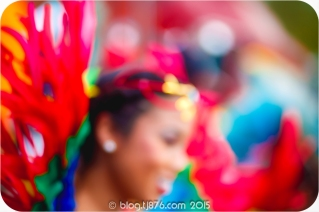 tj876 Jamaica Carnival 2015 (208)