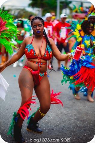 tj876 Jamaica Carnival 2015 (211)