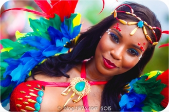 tj876 Jamaica Carnival 2015 (219)