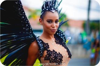 tj876 Jamaica Carnival 2015 (23)