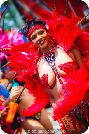 tj876 Jamaica Carnival 2015 (232)