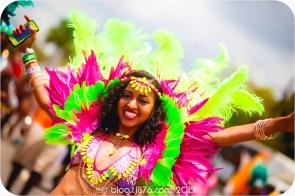 tj876 Jamaica Carnival 2015 (242)