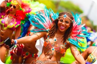 tj876 Jamaica Carnival 2015 (243)
