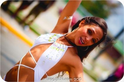 tj876 Jamaica Carnival 2015 (248)