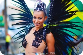 tj876 Jamaica Carnival 2015 (25)