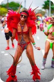 tj876 Jamaica Carnival 2015 (255)