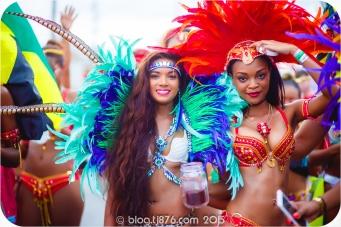 tj876 Jamaica Carnival 2015 (26)