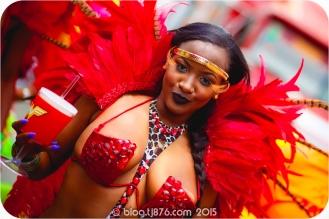 tj876 Jamaica Carnival 2015 (263)