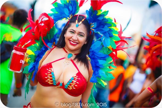 tj876 Jamaica Carnival 2015 (30)