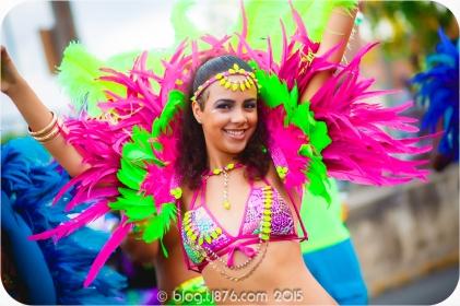 tj876 Jamaica Carnival 2015 (31)