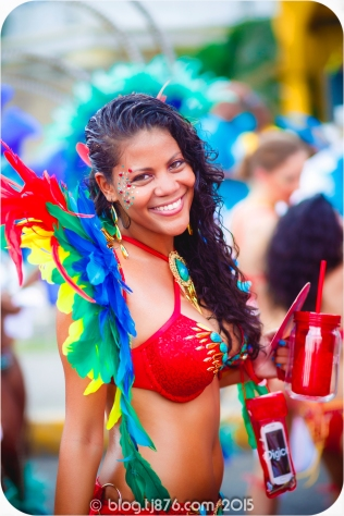 tj876 Jamaica Carnival 2015 (33)