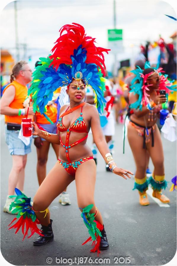 tj876 Jamaica Carnival 2015 (37)