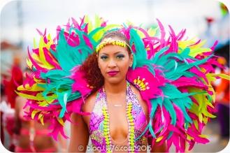 tj876 Jamaica Carnival 2015 (39)