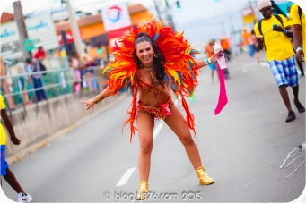tj876 Jamaica Carnival 2015 (40)