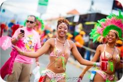 tj876 Jamaica Carnival 2015 (42)