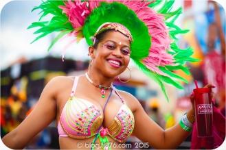 tj876 Jamaica Carnival 2015 (43)