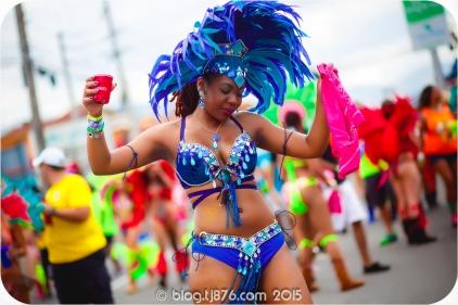 tj876 Jamaica Carnival 2015 (45)