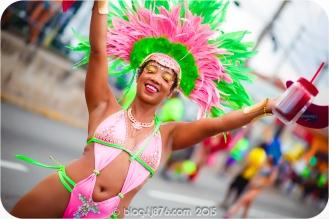 tj876 Jamaica Carnival 2015 (49)