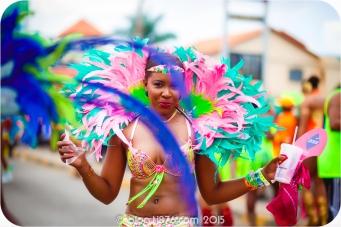 tj876 Jamaica Carnival 2015 (52)