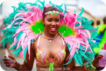 tj876 Jamaica Carnival 2015 (53)