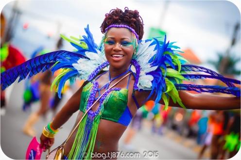 tj876 Jamaica Carnival 2015 (54)