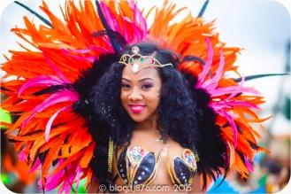 tj876 Jamaica Carnival 2015 (57)
