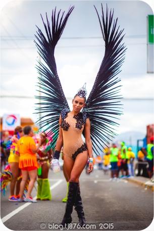 tj876 Jamaica Carnival 2015 (59)
