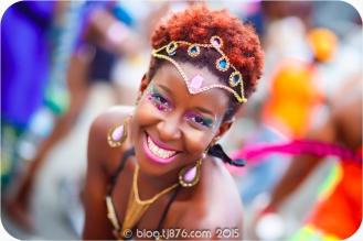 tj876 Jamaica Carnival 2015 (61)