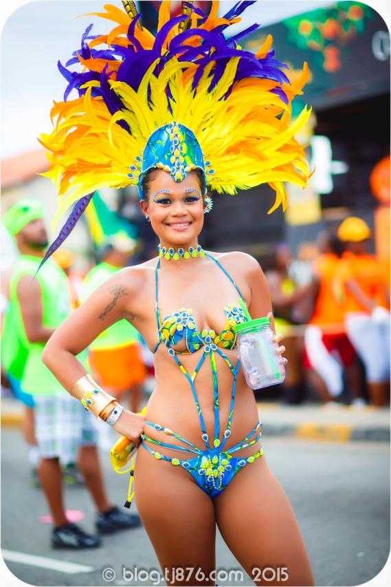 tj876 Jamaica Carnival 2015 (64)