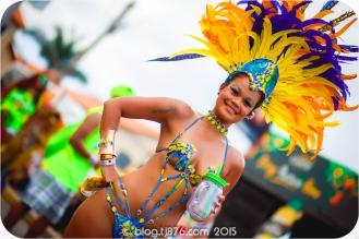 tj876 Jamaica Carnival 2015 (65)