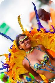 tj876 Jamaica Carnival 2015 (66)