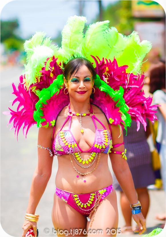 tj876 Jamaica Carnival 2015 (7)