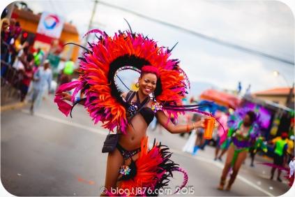 tj876 Jamaica Carnival 2015 (75)