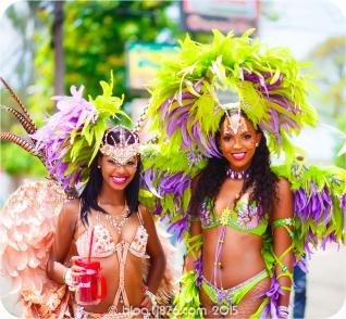 tj876 Jamaica Carnival 2015 (8)