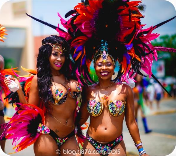 tj876 Jamaica Carnival 2015 (9)
