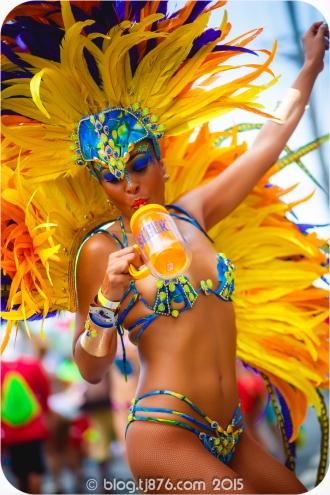 tj876 Jamaica Carnival 2015 (95)