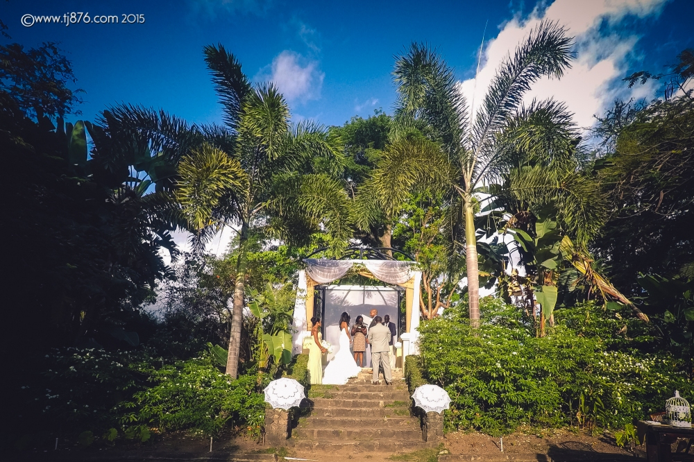 tj876 Jamaican Wedding Photographer- Hope Gardens  Wedding-17